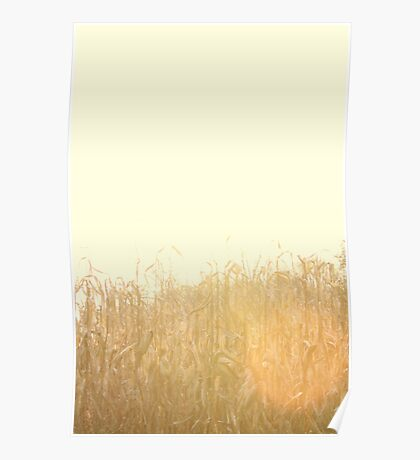 novembers harvest Poster