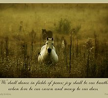 ~ Fields of Peace ~ a collaboration with Mandy Erskine/Ozzzywoman by Donna Keevers Driver