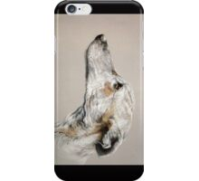 Greyhound iPhone Case/Skin