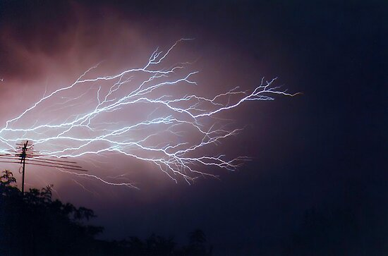 Fork Lightning by Anthony Superina