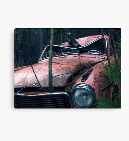 11.11.2011: Crowing through the Car Canvas Print