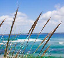 Sea Landscape by Marianne Ellis