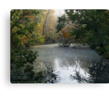 The Creek 2 Canvas Print