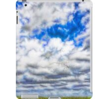 Abstract view of migrating magpie geese iPad Case/Skin