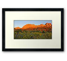 Snow Canyon State Park - Utah Framed Print