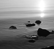 Stones by Aviana