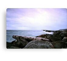 Half Moon Bay - Lone Log Canvas Print