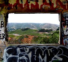 Window Through the Paint by Matt Hanson