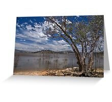 Gum On The Water Greeting Card
