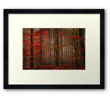 Enchanting Red Framed Print