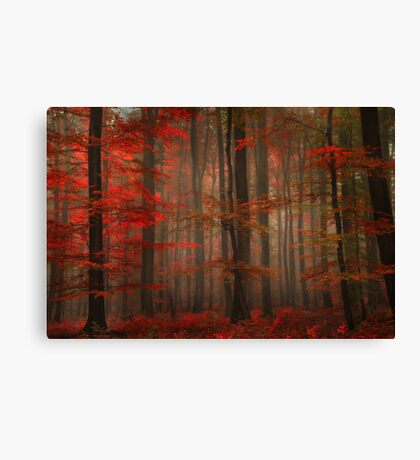 Enchanting Red Canvas Print