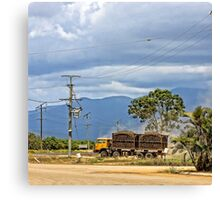 Hauling sugar cane on a truck Canvas Print