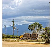 Hauling sugar cane on a truck Photographic Print