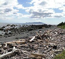 Driftwood Coast by gunda96