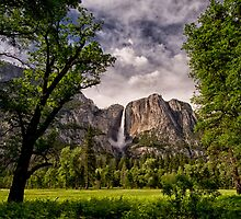 Yosemite Falls by Cat Connor
