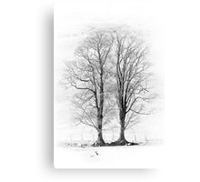 The Wyches of Hareden 02, Trough of Bowland, Lancashire Canvas Print