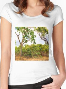 Eucalyptus Trees and Dry Grass Women's Fitted Scoop T-Shirt