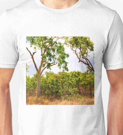 Eucalyptus Trees and Dry Grass Unisex T-Shirt