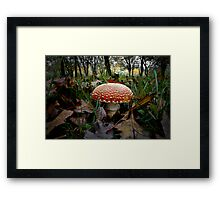 It's That Time Of Year Framed Print