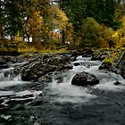 Calapooia Falls by Charles &amp; Patricia   Harkins ~ Picture Oregon