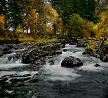 Calapooia Falls by Charles & Patricia   Harkins ~ Picture Oregon