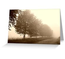 Paths in the Shadow Greeting Card