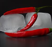Hot and Cold by Aviana
