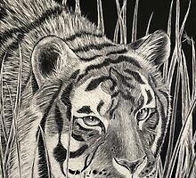 Tiger by Essenclis