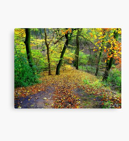 Coloured Countryside Canvas Print