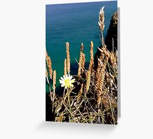 Flowers on a Cliff Edge Greeting Card