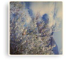 cloudbuster Canvas Print
