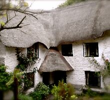 Devon Cottage by Johnathan Bellamy