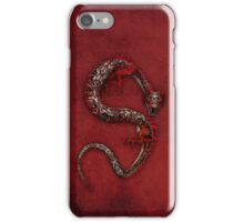 Dragon 13 iPhone Case/Skin