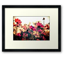 Cheer leaders...On 5 Featured Works Framed Print