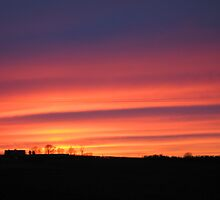Vibrant Sunset by Rachel Tyrrell