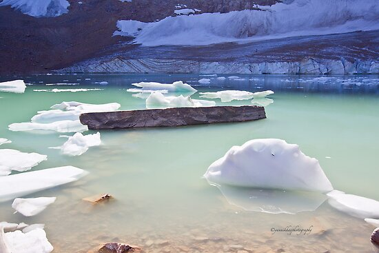 Detached Ice from the Angel Glacier in Alberta by Yannik Hay