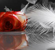 Love by Aviana