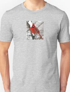 More Snow, Really? Unisex T-Shirt