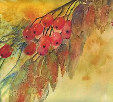 Autumn Berries by Val Spayne