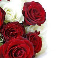 Sweet Love by Aviana