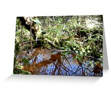 woodland scene Greeting Card