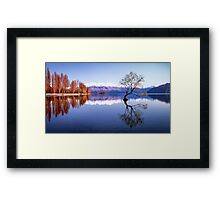Sunrise at that Wanaka Tree Framed Print