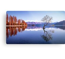 Sunrise at that Wanaka Tree Metal Print