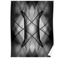 Mirror montage of a leaf in black and white Poster
