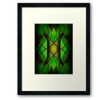 Mirror montage of a leaf Framed Print