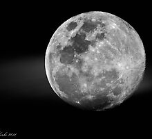 Luna by Darren Clarke