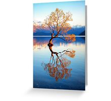 That Wanaka Tree Greeting Card