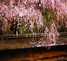 Zen Garden by Lynnette Peizer