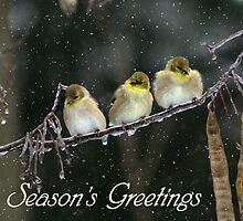 Seasons Greetings - Snowy Trio by Lori Deiter