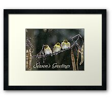 Seasons Greetings - Snowy Trio Framed Print